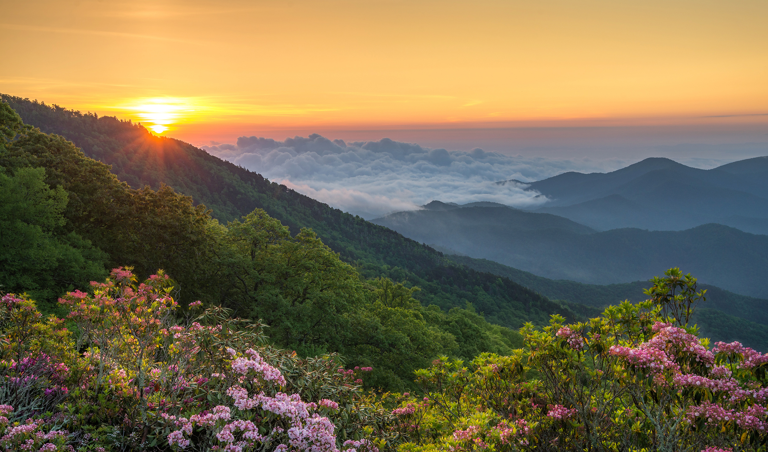 Image of North Carolina